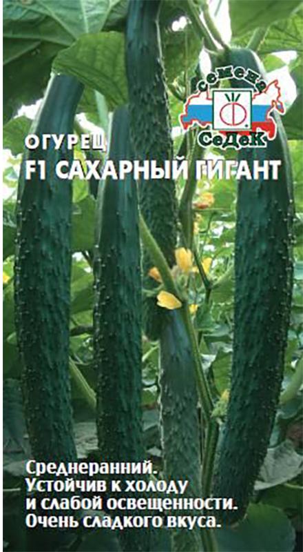 Семена Седек Огурец. Сахарный гигант F4690368005661