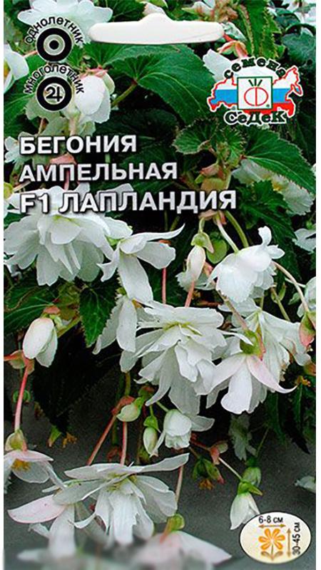 Семена Седек Бегония ампельная. Лапландия F14690368015554Обильноцветущая гибридная ампельная форма клубневой бегонии, образует 5-8 свисающих побегов длиной 30-45 см с цветоносами в пазухе каждого листа. Цветки белые, махровые и полумахровые, камелиецветные, 6-8 см вдиаметре.Цветение обильное и продолжительное до заморозков. В период вегетации образуются клубни, которые можно использовать для дальнейшей посадки на следующий сезон. Клубневые бегонии хорошо развиваются при умеренной температуре и слегка повышенной влажности воздуха, лучшее место для посадки - полутень, но при обильном и регулярном поливе подходят и открытые солнечные места. Во время цветения необходимы дополнительные подкормки.Выращивая бегонию из семян, не заделывайте их глубоко, так как они очень мелкие. Всходы держите под стеклом, увлажняя теплой (30°С) водой.Используется как горшечное растение для озеленения балконови вертикального озеленения участка, высаживается в кашпо, подвесные корзины, контейнеры.Уважаемые клиенты! Обращаем ваше внимание на то, что упаковка может иметь несколько видов дизайна.Поставка осуществляется в зависимости от наличия на складе.
