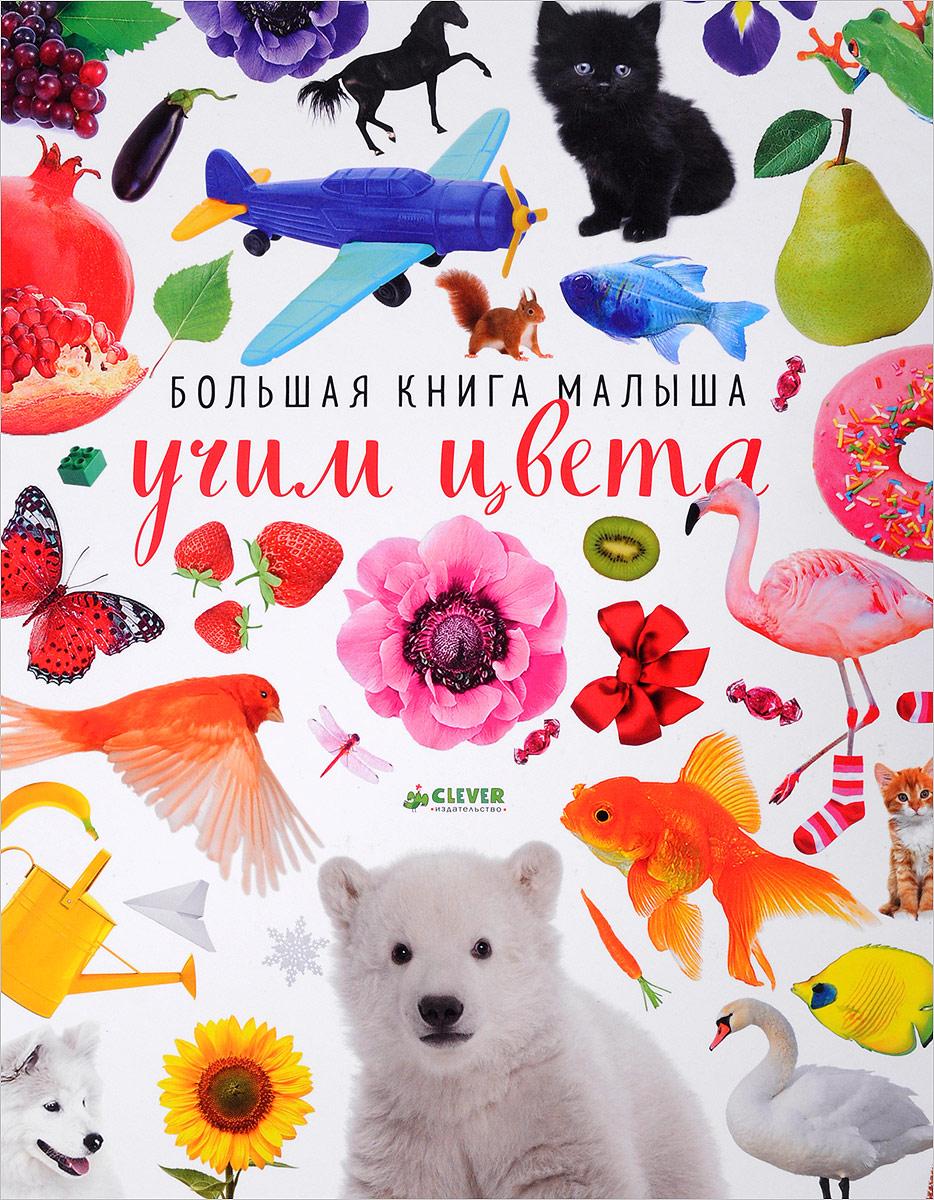 Евгения Попова Большая книга малыша. Учим цвета миллер а винтаж большая книга рисования и дизайна