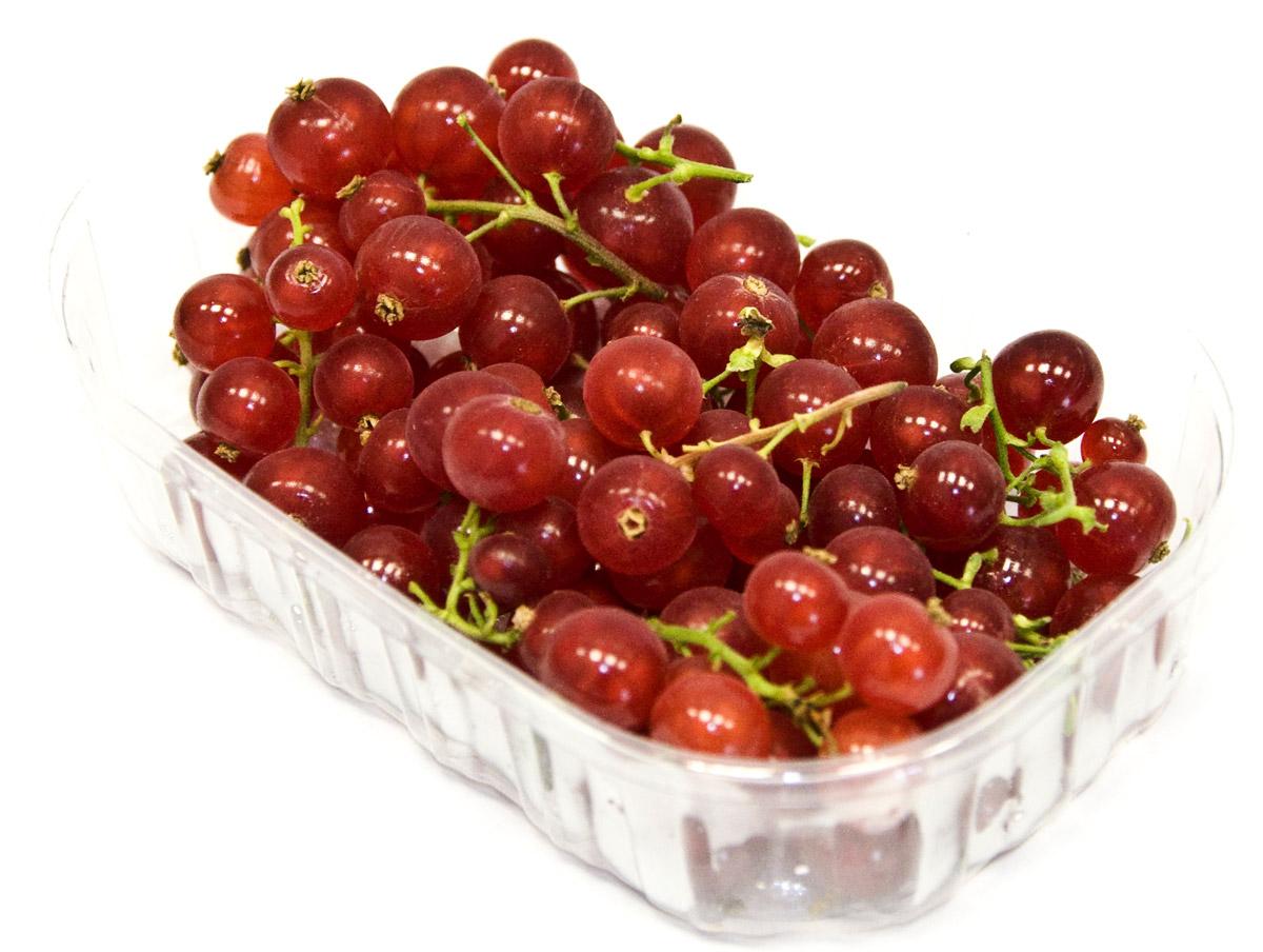 Смородина красная, 125 г куплю ягоды смородины в беларуси
