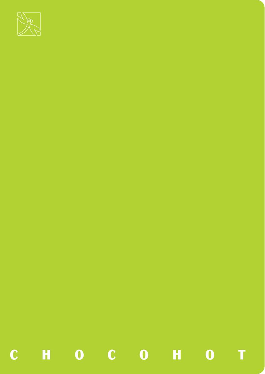 Стрекоза Блокнот Chocohot 40 листов цвет зеленый7911Блокнот - компактное и практичное полиграфическое изделие,предназначенное для записей и заметок. Такой аксессуар прекрасно подойдетдля фиксации повседневных дел. Это канцелярское изделие отличаетсякрасочным оформлением и придется по душе как взрослому, так и ребенку.
