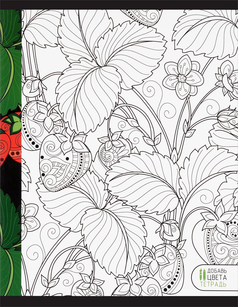 Канц-Эксмо Тетрадь Магия цвета Клубника 48 листов в клетку в балашихе однотонные тетради 12 листов