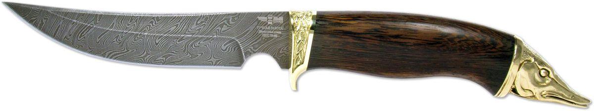 Нож охотничий Ножемир Рыбацкий, цвет: темно-коричневый, длина клинка 14,5 смРЫБАЦКИЙ (7745)дНож из дамасской стали которая получается при многократной перековке стального пакета, состоящего из сталей с разным содержанием углерода, для проявления узора на клинке применяется особая технология, в основе лежит высоколегированная сталь, армированная более упругими волокнами. Клинок имеет толщину 2 мм и закалку до твердости 62 HRC. Нож хорошо сбалансирован и управляем. Очень удобен в большинстве ситуаций применения на охоте, хоть лося разделать, хоть колбаску нашинковать - хороший дамасский нож справится со всеми этими задачами без проблем и не затупится. Но стоит помнить о недостатке ножей из дамасской стали - дамаск подвержен коррозии, и требует к себе особого внимания. Нож Рыбацкий (7745) д - обладает оптимальными характеристиками с хорошей износоустойчивостью и твердостью. Рукоятка ножа, выполненная из ценных пород древесины, украшена художественным литьем из мельхиора. Нож комплектуется кожаными ножнами.