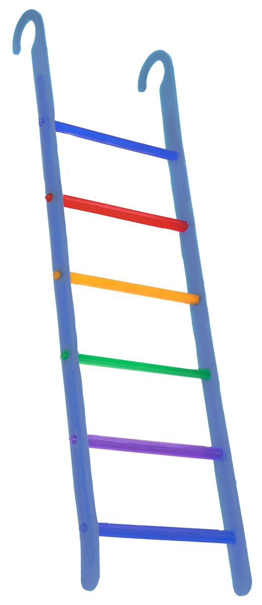 Лестница для птиц Каскад, цвет: голубой, 6 х 21 х 0,5 см33300519_голубойЛестница Каскад, выполненная из пластика, прекрасно подойдет для птиц. Она крепится на любые прутья клетки с помощью специальных крючков. Ваш питомец сможет вскарабкиваться по перекладинам, словно прыгая с одной веточки на другую. Такой аксессуар в клетке не даст скучать вашему питомцу.