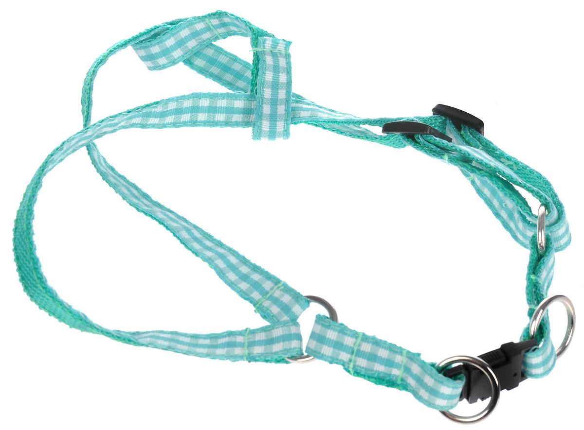 Шлейка для собак GLG Клетка, цвет: зеленый, обхват шеи 25 см, обхват груди 40 смOH06/AШлейка для собак Каскад Классика, изготовленная из высококачественного нейлона, подходит для собак малых и средних размеров. Крепкиеметаллические и пластиковые элементы делают ее надежной и долговечной. Изделие оснащеносветоотражающими полосами.Шлейка - это альтернатива ошейнику. Правильно подобранная шлейка не стесняет движенияпитомца, не натирает кожу, поэтому животное чувствует себя в ней уверенно и комфортно.Изделие отличается высоким качеством, удобством и универсальностью.Размер регулируется при помощи пряжки. Обхват шеи: 20-30 см. Обхват груди: 25-40 см. Ширина шлейки: 1,5 см.