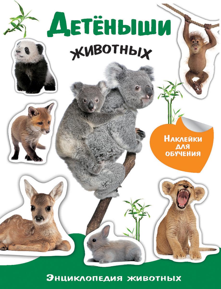 Детеныши животных (+ наклейки)