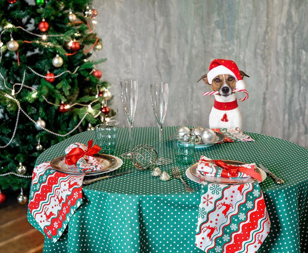 Скатерть Bonita Новогодний базар, цвет: зеоленый, белый, 150 х 200 см. 1001081748610010817486Великолепная скатерть Bonita Новогодний базар, изготовленная из натурального хлопка, создаст атмосферу уюта и домашнего тепла винтерьере вашей кухни. Скатерть органично впишется в интерьер любого помещения, а оригинальный мотив удовлетворит даже самыйизысканный вкус. В современном мире кухня - это не просто помещение для приготовления и приема пищи. Это особое место, где собирается вся семья и царитдушевная атмосфера.