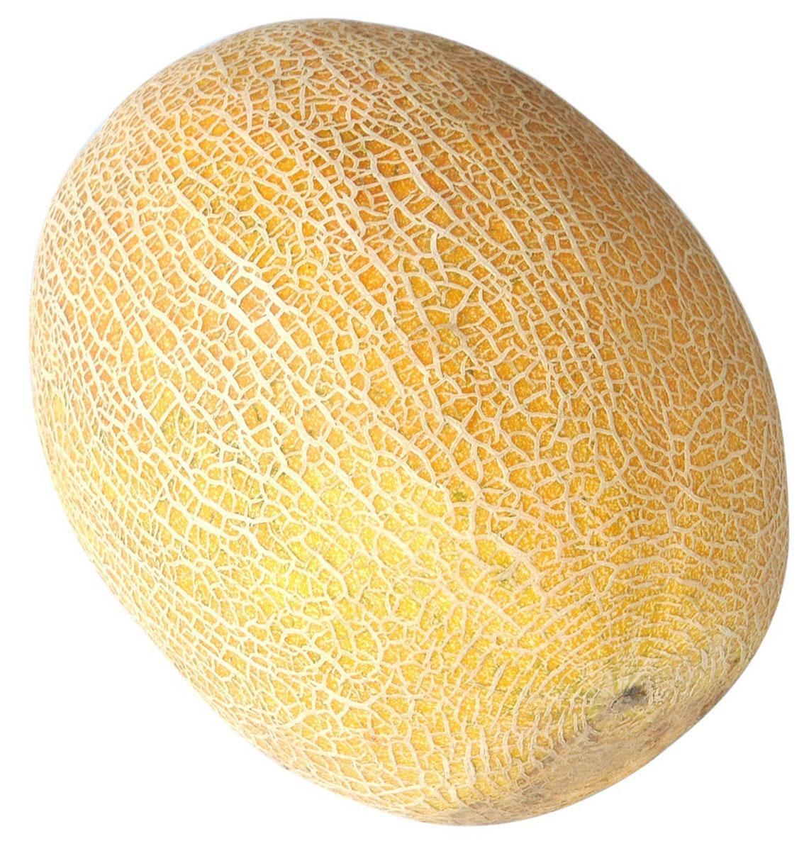 Дыня Галия, 1 шт310307Дыню Галия отличают большие размеры и глубоко-зелёный цвет мякоти. Сочная и ароматная дыня Галия имеет собственный характерный оттенок вкуса. Он больше напоминает классическую мускусную дыню, чем медовую. Цвет внутренней плоти может меняться от светло-желтого до зелёного. Дыню Галия добавляют в салаты, едят свежей на десерт или используют в приготовлении варенья или повидла. Этот сорт хорош для всех кулинарных рецептов, он достаточно сладкий для десертов, но и прекрасен, как салатная основа.Дыня Галия содержит много витамина С, витамина А, биофлавоноидов, калия, кальция и железа, а также обладает значительным уровнем пищевых волокон, в том числе пектина.Жиры: 0 г. Углеводы: 10,3 г. Белки: 0,6 г. Калорийность: 38 кКал.