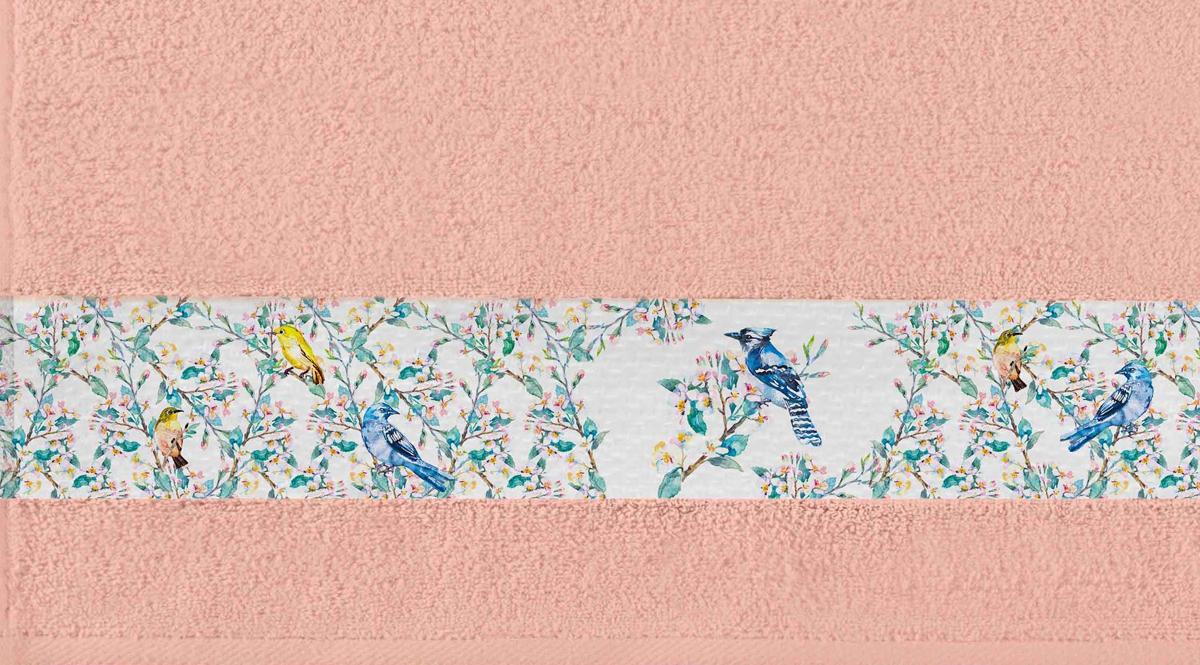 Полотенце Aquarelle Фотобордюр. Цветы 5, цвет: розово-персиковый, 50 х 90 см. 712540712540Махровое полотенце Aquarelle Фотобордюр. Цветы 5 выполнено из хлопка. Оно отлично впитывает влагу,быстро сохнет, сохраняет яркость цвета и не теряет форму после многократных стирок. Полотенце мягкое и приятное на ощупь. Бордюр изделия оформлен вставкой с цветочным принтом.