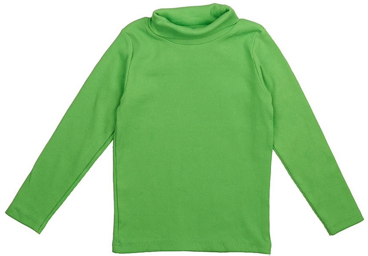 Водолазка для мальчика JimJim, цвет: зеленый. DP102. Размер 110DP102Великолепная детская водолазка JimJim идеально подойдет вашему ребенку. Изготовленная из натурального хлопка с добавлением эластана, она необычайно мягкая и приятная на ощупь, не сковывает движения малыша и позволяет коже дышать, не раздражает даже самую нежную и чувствительную кожу ребенка, обеспечивая ему наибольший комфорт. Водолазка классического кроя с длинными рукавами и воротником-гольф. Оригинальный современный дизайн и модная расцветка делают эту водолазку модным и стильным предметом детского гардероба.