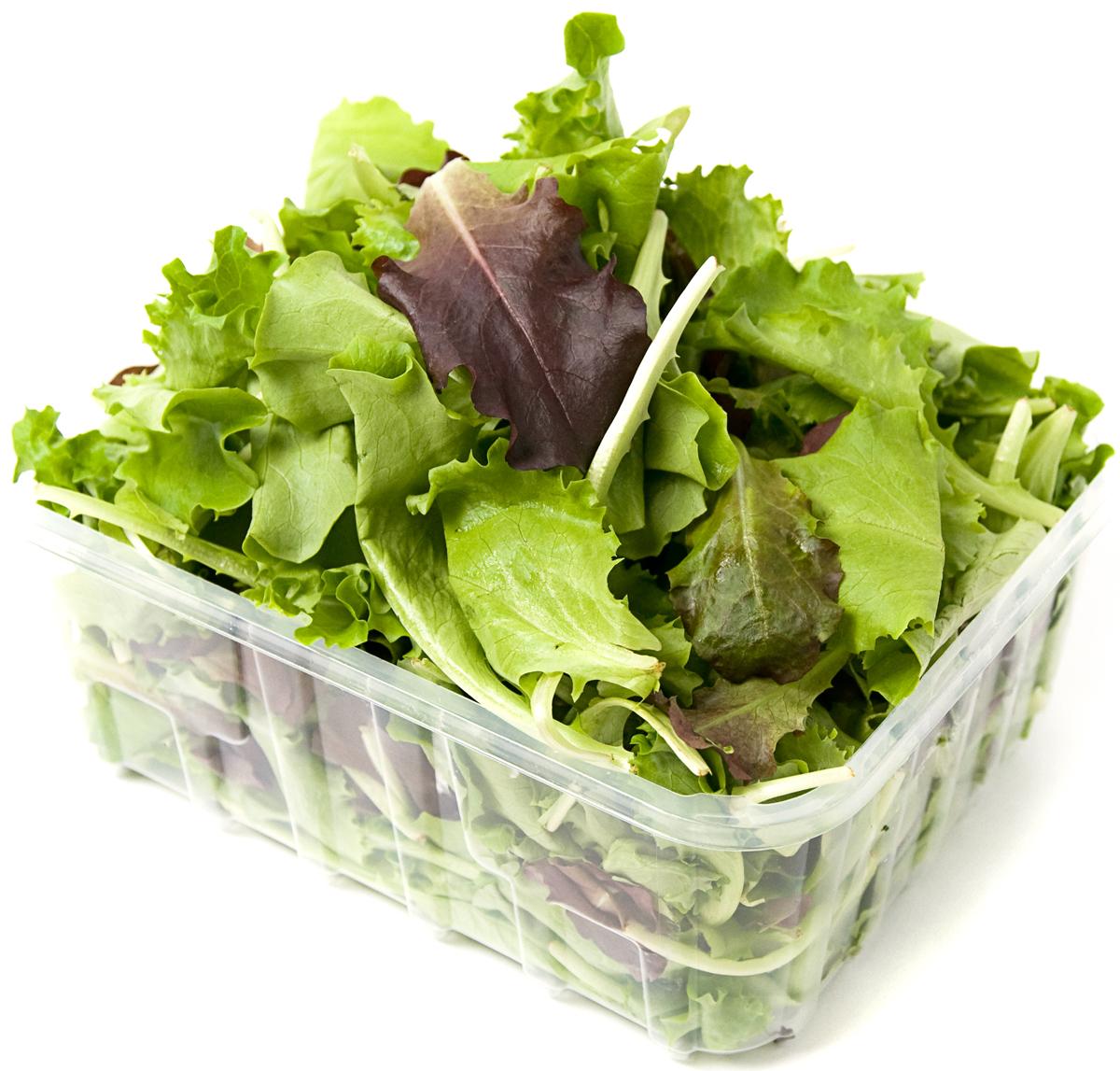 Смесь салатов, 125 г2037Чем особенно хороши готовые салатные смеси, так это своей чистотой. Листья, заранее подготовленные и упакованные в дышащий пластик, ненужно мыть – это уже сделали за вас! А значит, в салате они будут нежными или хрустящими, как и положено, а не вялыми или плохопросушенными. Если вы открыли упаковку, но не использовали всю сразу, пересыпьте листья в миску, застеленную бумажным полотенцем, исверху накройте несколькими такими же полотенцами. Храните в холодильнике не дольше двух дней. свежая зелень