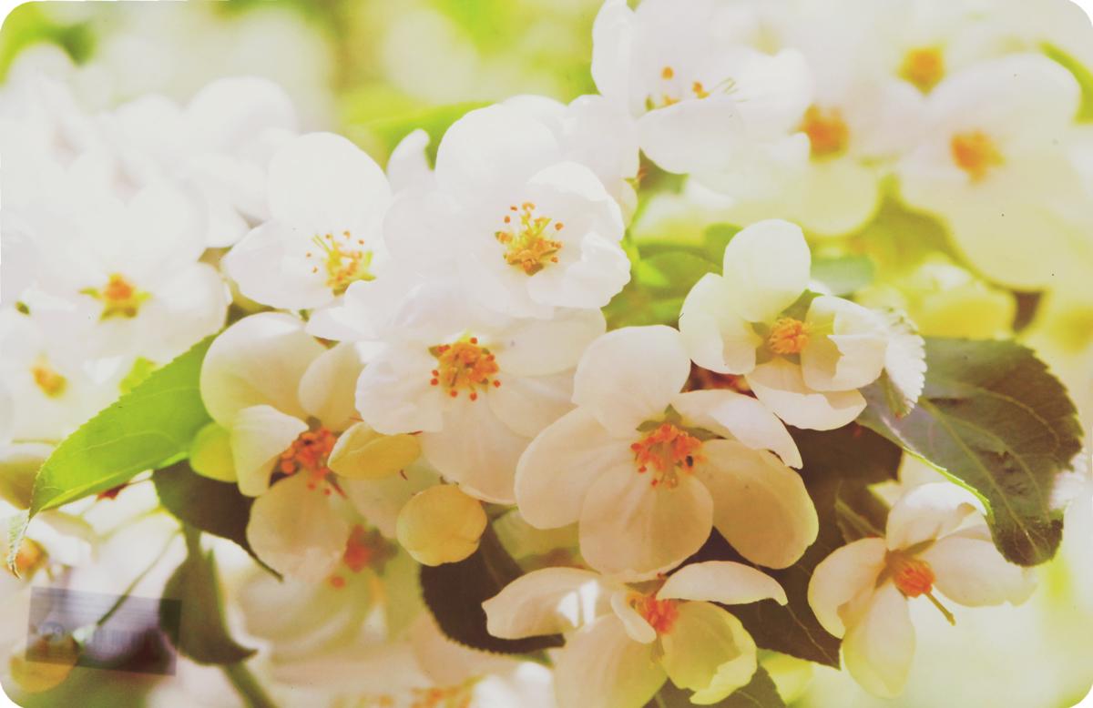 Салфетка под горячее Fenghua Flowers. Жасмин, 43,5 х 28 см. TAP021TAP021_жасминСалфетка под горячее Fenghua Flowers. Жасмин изготовлена из полимерного материала. Такая салфетка прекрасно подойдет для украшения интерьера кухни, она сбережет стол от высоких температур и грязи.Каждая хозяйка знает, что подставка под горячее - это незаменимый и очень полезный аксессуар на каждой кухне. Ваш стол будет не только украшен оригинальной подставкой, но и сбережен от воздействия высоких температур ваших кулинарных шедевров. Размер салфетки: 43,5 х 28 см.