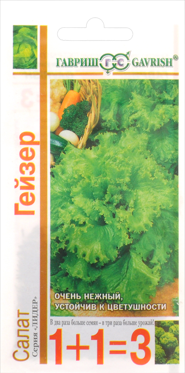 Семена Гавриш Салат. Гейзер4601431020948Среднеспелый (64 дня от полных всходов до уборки зелени) сорт. Рекомендуется для выращивания в открытом изащищенном грунте. Посев семян непосредственно в грунт в апреле - мае. На рассаду высевают в марте - апреле,высадка рассады - в мае. Листовой, имеет полуприподнятую розетку крупных зеленых листьев. Лист крупный,длиной 24 см, шириной 23 см, зеленый, веерообразный, с мелкозубчатонадрезанным волнистым краем, с нежнойполухрустящей консистенцией листьев, слабопузырчатой поверхностью. Масса розетки около 400 г. Вкусотличный. Устойчив к цветушности, к краевому ожогу листьев. Схема посадки 30x30 см. Урожайность 4,0-5,0 кг/ м2.Товар сертифицирован.Уважаемые клиенты! Обращаем ваше внимание на то, что упаковка может иметь несколько видов дизайна.Поставка осуществляется в зависимости от наличия на складе.