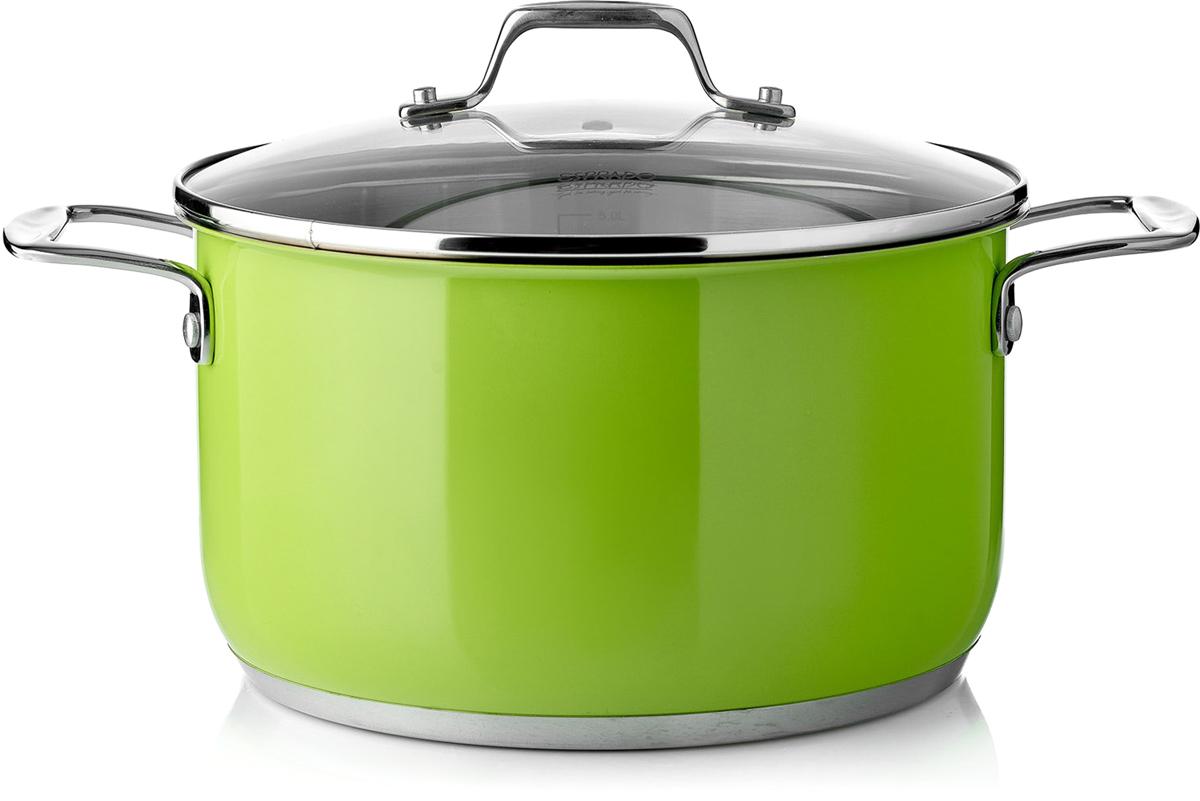 """Кастрюля Esprado """"Aranda Verde"""" с крышкой, цвет: зеленый, серебристый, 6,2 л"""