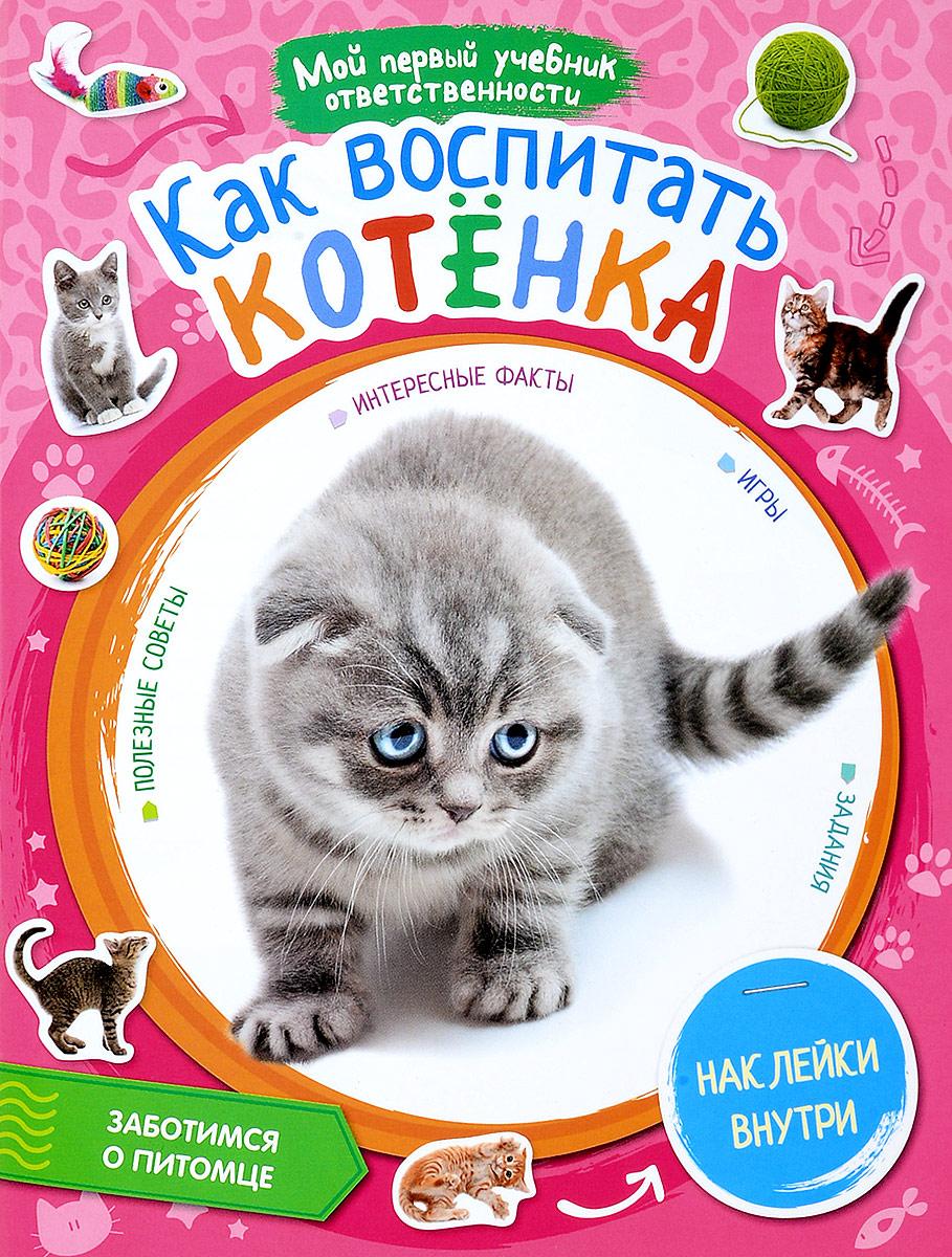 Т. Стадольникова Как воспитать котенка (+ наклейки) как правильно и выбрать новый автомобиль