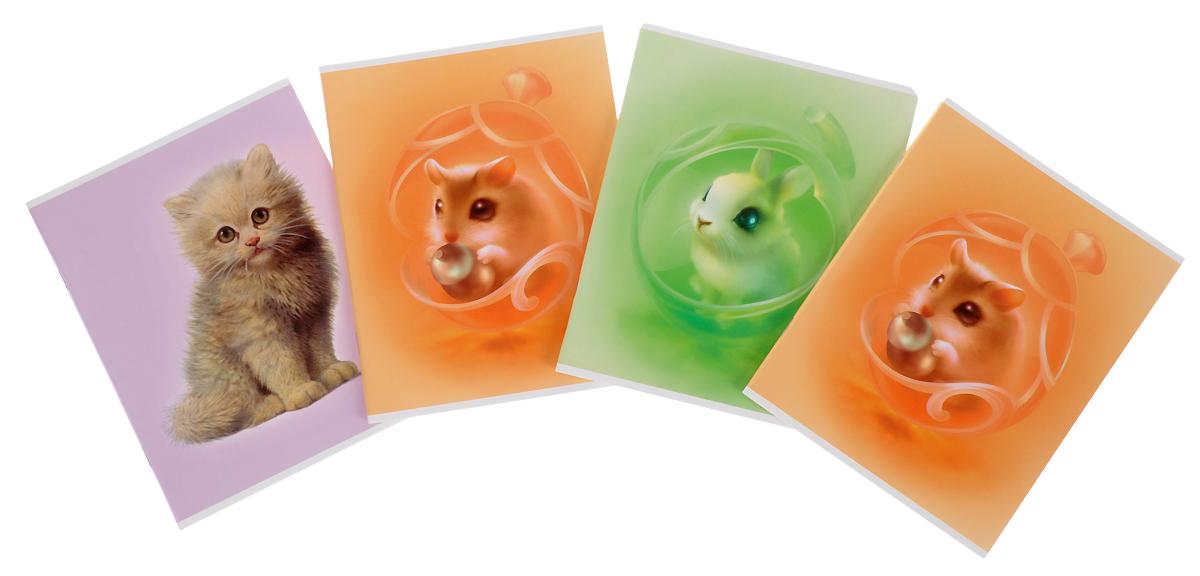 Action! Набор тетрадей Пушистики 48 листов в клетку цвет мультицвет 4 штAN 4854/5Набор тетрадей Action! Пушистики прекрасно подойдет для учащихся любого возраста. Обложка выполнена из ламинированного картона с изображением милого пушистого зверька. Внутренний блок тетради состоит из 48 листов белой бумаги. Страницы размечены стандартной линовкой в голубую клетку и дополнены полями, совпадающими с лицевой и оборотной стороны листа. Набор состоит из четырех тетрадей.Уважаемые клиенты!Обращаем ваше внимание на возможные изменения в дизайне обложек тетрадей. Поставка осуществляется в зависимости от наличия на складе.