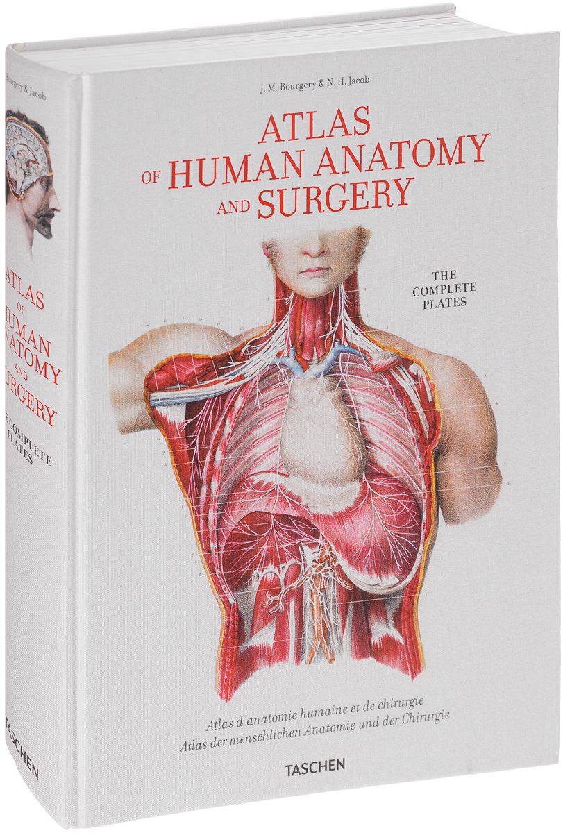 Atlas of Human Anatomy and Surgery: The Complete Plates human anatomical anatomy hand medical model nerve blood vessel divided