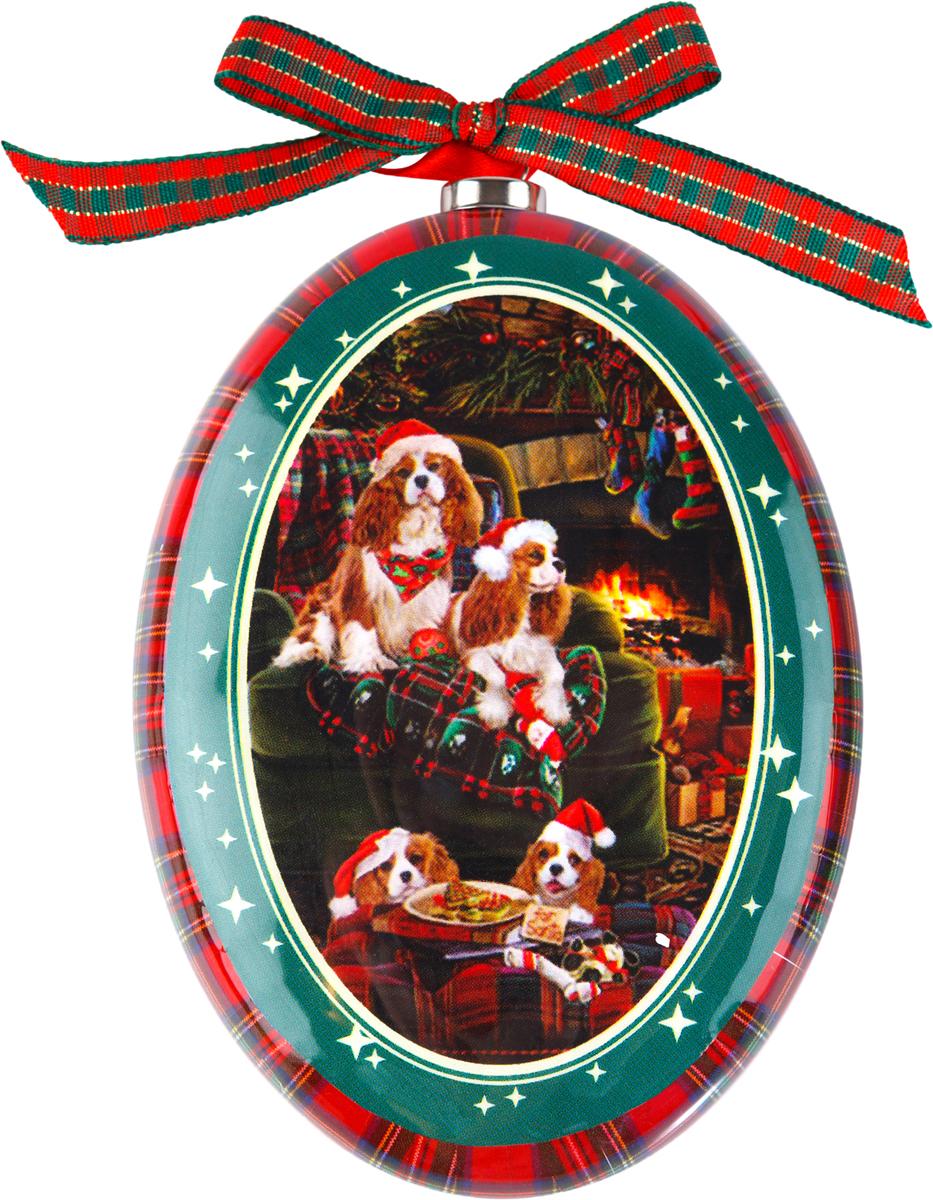Украшение новогоднее подвесное Mister Christmas Кавалер кинг-чарльз-спаниель, высота 11смPM-DISK-17Подвесное украшение Mister Christmas выполнено в виде диска папье-маше с изображением символа года 2018, изготовлено вручную из бумаги и покрыто несколькими слоями лака. Такой диск очень легкий, но в то же время удивительно прочный. На создание одной такой игрушки уходит несколько дней. И в результате получается настоящее произведение искусства!Изделие оснащено ленточкой для подвешивания.Такое украшение станет превосходным подарком к Новому году, а также дополнит коллекцию оригинальных новогодних елочных игрушек.