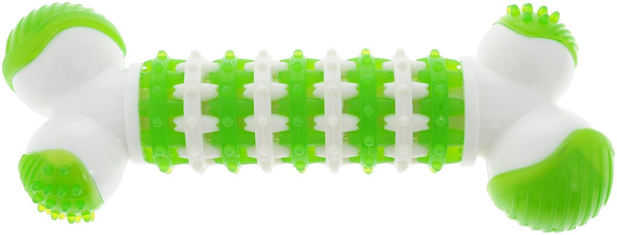 Игрушка для собак Грызлик Ам Косточка. Dental Nylon, цвет: зеленый, белый, длина 18,5 см30.GR.039Игрушка для собак Грызлик Ам Косточка. Dental Nylon, изготовленная из качественного нейлона,устойчива к повреждениям. Игрушка поможет занять щенка во время смены зубов, арасшалившаяся взрослая собака не будет грызть мебель, обувь и другие нужные вещи.