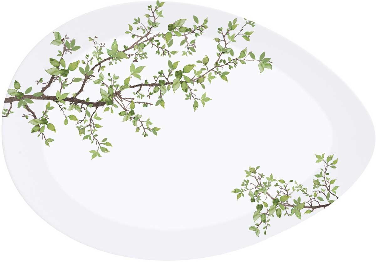 Тарелка Easy Life Натура, 24 х 16,5 смEL-R1086/NTRAТарелка Easy Life Натура изготовлена из высококачественного фарфора, декорирована рисунком.Такая тарелка прекрасно подойдет для вашей кухни и великолепно украсит стол.Изящный дизайн и красочность оформления тарелки придутся по вкусу и ценителям классики, итем, кто предпочитает утонченность и изысканность.