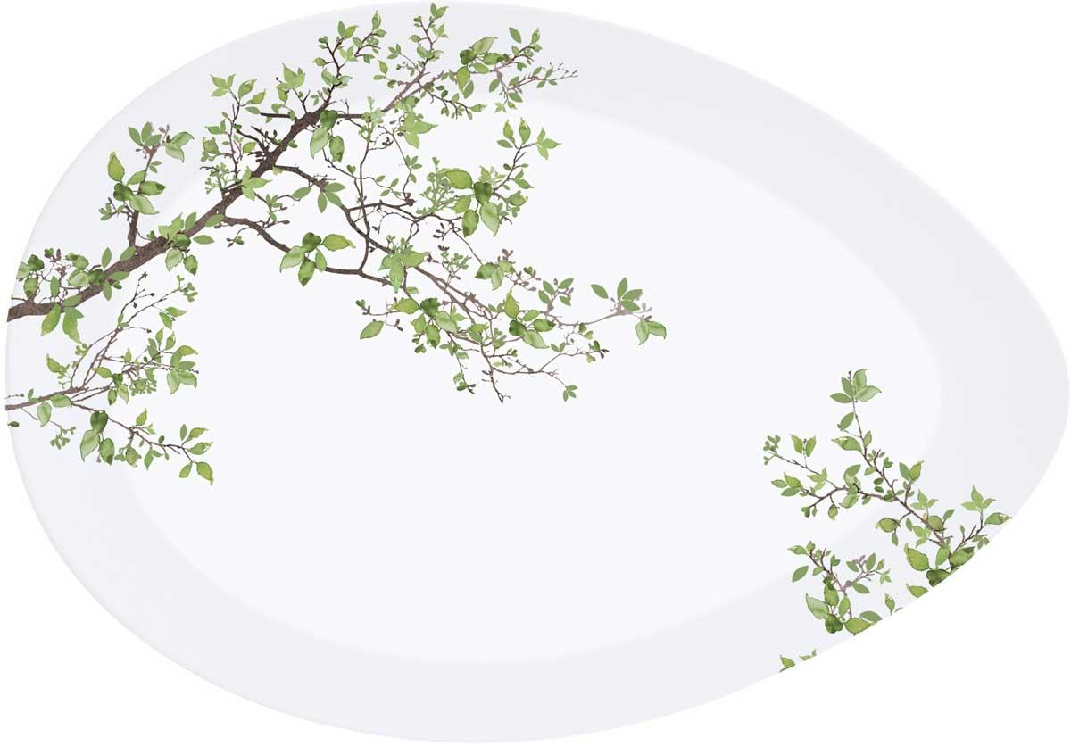 Тарелка Easy Life Натура, 36 х 25 смEL-R1087/NTRAТарелка Easy Life Натура изготовлена из высококачественного фарфора, декорирована рисунком.Такая тарелка прекрасно подойдет для вашей кухни и великолепно украсит стол.Изящный дизайн и красочность оформления тарелки придутся по вкусу и ценителям классики, итем, кто предпочитает утонченность и изысканность.