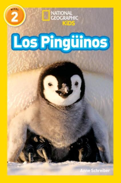 NGR LOS PINGUINOS los pinguinos adoran los colores