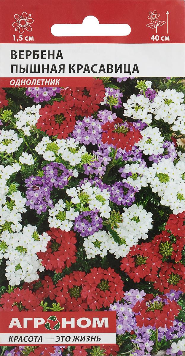 Семена Аэлита Вербена. Пышная красавица4603418029777Семена Аэлита Вербена. Пышная красавица - декоративно-цветущее роскошное растение с приятным ароматом, привлекающим в ваш сад бабочек. Отличается обильным и продолжительным цветением, продолжающимся с начала лета до глубокой осени. Растет в виде компактных ветвистых кустиков (до 40 см высотой), на верхушках которых образуются душистые цветки разнообразных ярких оттенков до 1 см в диаметре, собранные в многочисленные пышные зонтиковидные соцветия. Цветение с конца июня до заморозков. Используют для посадки на клумбах, рабатках, различных цветниках, хорошо смотрится в контейнерах и балконных ящиках, подвесных корзинах. Агротехника: предпочитает плодородную, рыхлую, известкованную почву, солнечное местоположение. Не переносит переувлажнения. Семена высевают март-апрель на рассаду. Для ускорения прорастания семена перед посевом намачивают в воде 2 часа, затем 3-4 дня выдерживают в холодильнике. После появления первого настоящего листа сеянцы пикируют в отдельные торфяные горшочки. В открытый грунт рассаду высаживают в середине мая на расстоянии 20-25 см друг от друга. Дальнейший уход: умеренный полив, прищипка верхушек растений, регулярное удаление увядших соцветий, подкормка каждые 4 недели комплексным минеральным удобрением.Товар сертифицирован.Уважаемые клиенты! Обращаем ваше внимание на то, что упаковка может иметь несколько видов дизайна. Поставка осуществляется в зависимости от наличия на складе.
