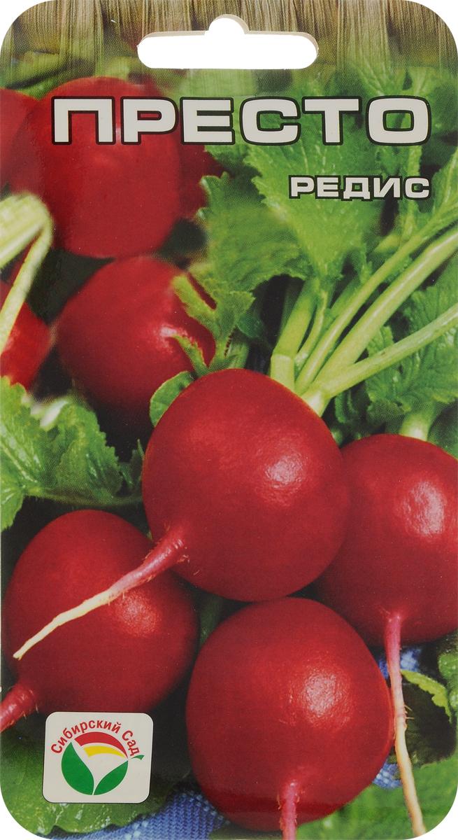 Семена Сибирский сад Редис. Престо7930041233279Великолепный раннеспелый сорт редиса (созревает за 16-18 дней). Рекомендуется для многократного высева и получения полноценного урожая с ранней весны до конца августа. Корнеплоды округлой формы, красные, массой 20 грамм. Мякоть белая, очень нежная, сочная, отличного вкуса. Сорт отличается высокой товарностью и выровненностью корнеплодов. Устойчив к стрелкованию.Редис высевают в несколько сроков: в конце апреля (грядку укрывают пленкой до появления всходов), в дальнейшем при необходимости посевы проводят с интервалом 2-2,5 недели, для зимнего хранения позднеспелые сорта высевают в первых числах августа. Семена высевают в рядки с междурядьями 10-12 см, расстоянием между семенами 2-3 см на глубину 1-1,5 см. После появления всходов необходимо регулярно рыхлить почву и поддерживать ее во влажном состоянии.Для ускорения процесса всхожести семян, оздоровления растений, улучшения завязываемости плодов рекомендуется пользоваться специально разработанными стимуляторами роста и развития растений.Уважаемые клиенты! Обращаем ваше внимание на то, что упаковка может иметь несколько видов дизайна. Поставка осуществляется в зависимости от наличия на складе.