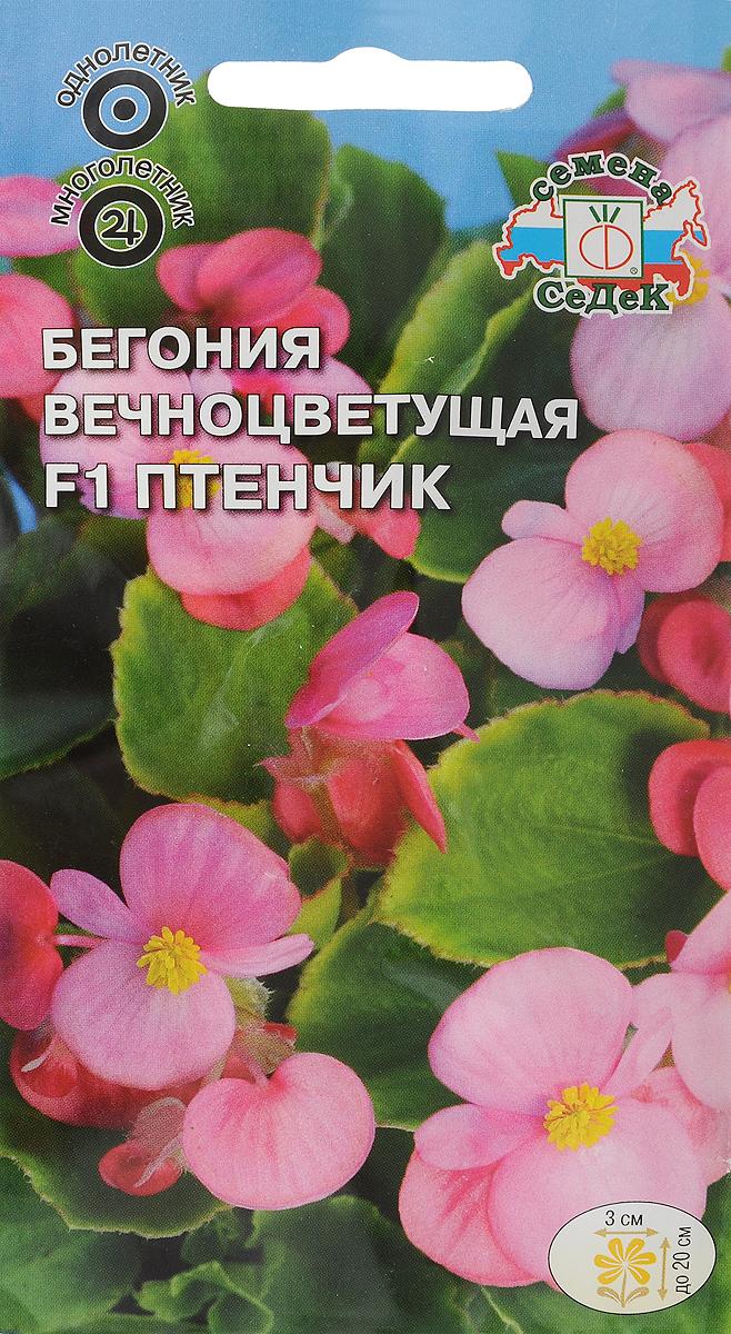 Семена Седек Бегония. Птенчик4690368015615Семена Седек Бегония. Птенчик - многолетнее травянистое растение, в культуре открытого грунта выращивается как однолетнее. Растение кустовое компактное, высотой до 20 см. Листья округло-овальные, блестящие, ярко-зеленые, мелкозубчатые по краю. Цветки простые и полумахровые, светло-розовые, 3 см в диаметре. Во время цветения убирать отцветшие цветки не требуется, так как растение способно к самоочищению. Цветет обильно и продолжительно до заморозков. Имеет высокую устойчивость к неблагоприятным погодным условиям. Хорошо развивается при солнечной и пасмурной погоде. Выращивая бегонию из семян, не заделывайте их глубоко, так как они очень мелкие. Всходы держите под стеклом, увлажняя теплой (30° С) водой. Используется для выращивания на клумбах, в рабатках, как горшечное растение, для озеленения балконов. Высаживается в кашпо, подвесные корзины, контейнеры.Товар сертифицирован. Уважаемые клиенты! Обращаем ваше внимание на то, что упаковка может иметь несколько видов дизайна. Поставка осуществляется в зависимости от наличия на складе.