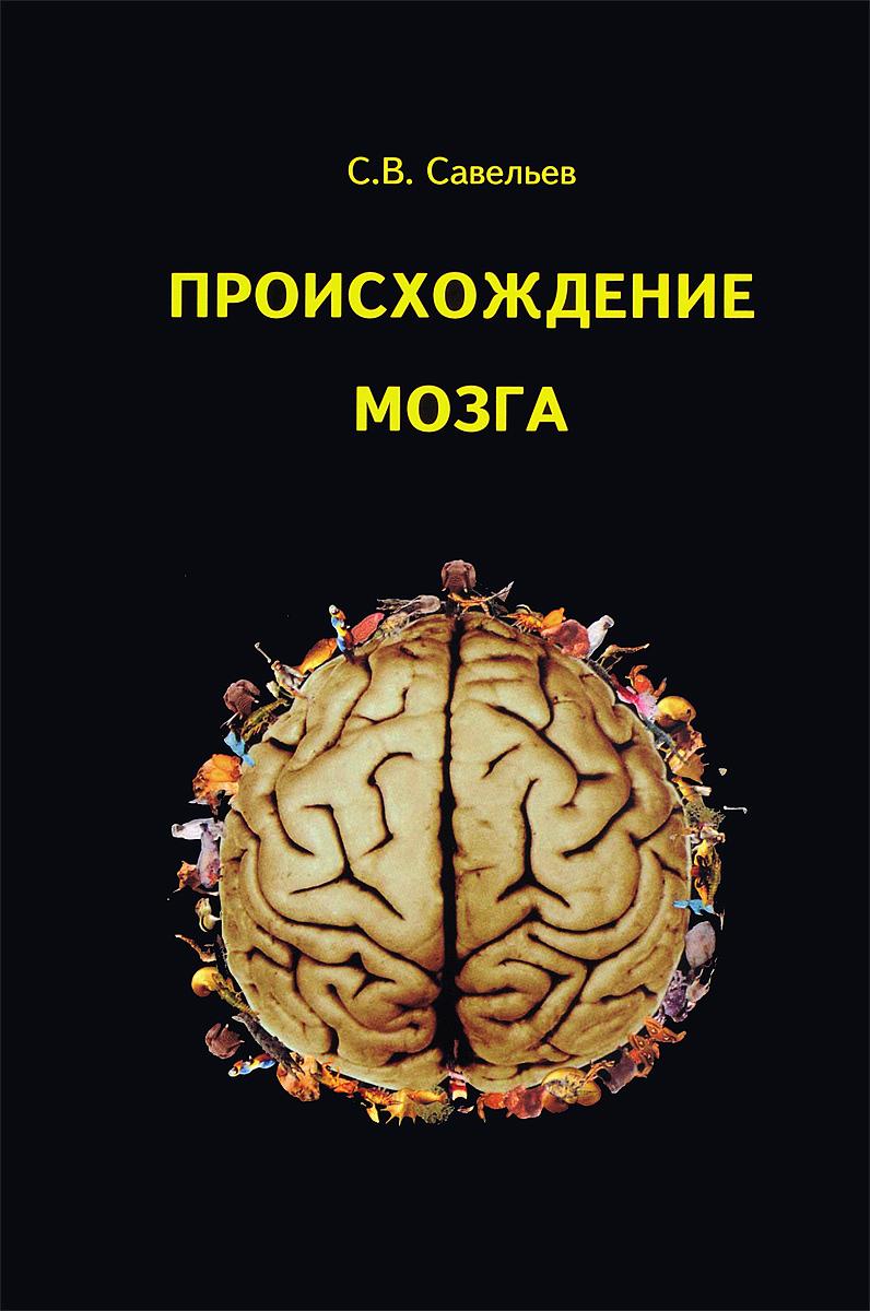 Происхождение мозга