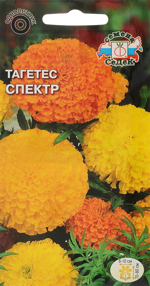Семена Седек Бархатцы. Тагетес Спектр4607116263365Семена Седек Бархатцы. Тагетес Спектр - изумительная по насыщенности теплых золотисто-оранжевых тонов смесь сортов. Растения сильнорослые, мощные, с красивыми перисто-рассеченными листьями. Соцветия крупные, шаровидные, густомахровые, оранжевые, абрикосовые, желтые, 8-10 см в диаметре. Тагетес неприхотлив в уходе. Теплолюбив и светолюбив, выносит небольшое затенение, засухоустойчив, отзывчив на плодородие почв. Широко используется в озеленении на клумбах и в групповых посадках, а также как фитосанитарное растение.Товар сертифицирован. Уважаемые клиенты! Обращаем ваше внимание на то, что упаковка может иметь несколько видов дизайна. Поставка осуществляется в зависимости от наличия на складе.
