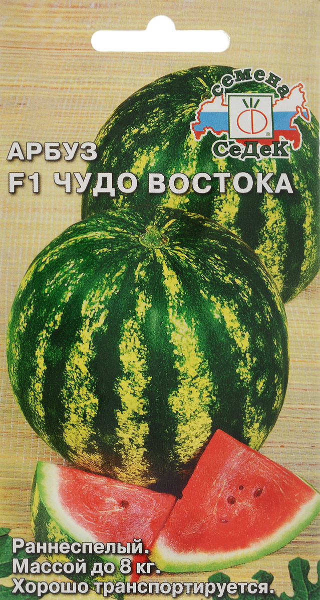 Семена Седек Арбуз. Чудо Востока4607149404216Семена Седек Арбуз. Чудо Востока - раннеспелый (от всходов до созревания плодов 75-85 дней) гибрид для открытого грунта и пленочных укрытий. Растение среднеплетистое. Плоды округлые, зеленые с черными полосами, массой 6-8 кг. Мякоть красная, сочная, сладкая, вкусная. Урожайность с растения 15-21 кг. Ценные качества гибрида: устойчивость к антракнозу и фузариозному увяданию, транспортабельность, сохранение товарных качеств при длительном хранении. Товар сертифицирован. Уважаемые клиенты! Обращаем ваше внимание на то, что упаковка может иметь несколько видов дизайна. Поставка осуществляется в зависимости от наличия на складе.