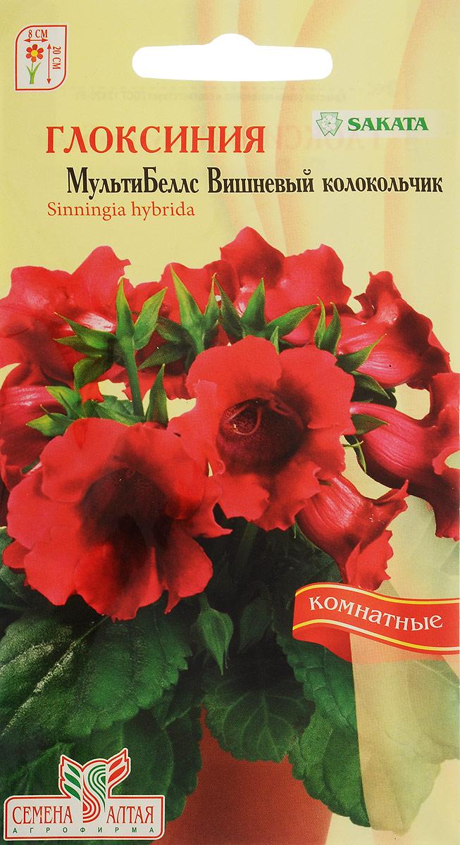 Семена Алтая Глоксиния. МультиБеллс. Вишневый колокольчик4680206018649Одно из самых эффектных декоративных комнатных растений с крупными роскошными цветками – граммофонами, покоряющее широтой цветовой гаммы с многообразием полутонов и оттенков. Куст компактный, высотой до 20 см, с крупными плотными темно-зелеными опушенными листьями и крупными вишнево-малиновыми цветками. Растение не вытягивается и формирует компактную розетку с короткими междоузлиями. Семена на рассаду сеют в январе-феврале, не заделывая землей, а просто накрывая ящики стеклом или полиэтиленовой пленкой для сохранения влажности. Всходы появляются только на свету при температуре 22-24°С через 10-15 дней. Пока всходы мелкие их лучше не поливать, а опрыскивать. Цветение наступает через 9-11 месяцев с момента появления всходов. Цветущим глоксиниям необходимо хорошее освещение, но от прямых солнечных лучей их лучше притенять. Поливать теплой водой под корень.Уважаемые клиенты! Обращаем ваше внимание на то, что упаковка может иметь несколько видов дизайна. Поставка осуществляется в зависимости от наличия на складе.