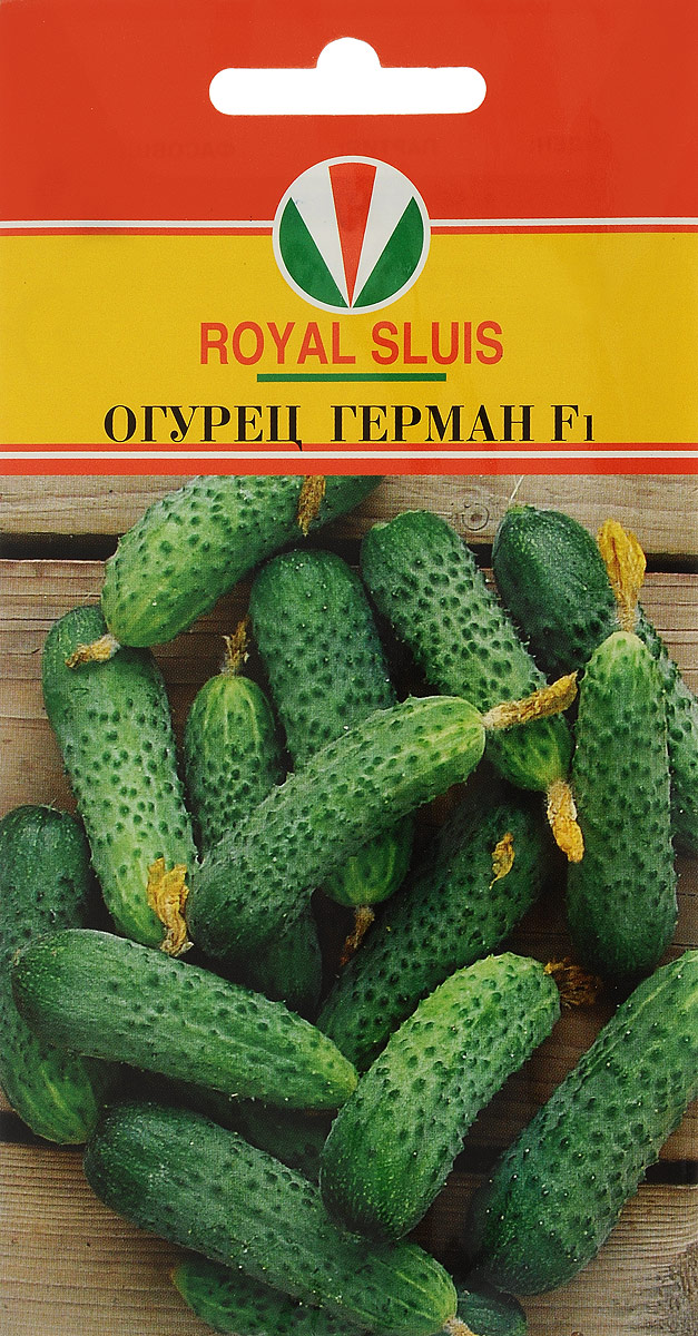 Семена Royal Sluis Огурец. Герман F1 огурец зеленика отзывы