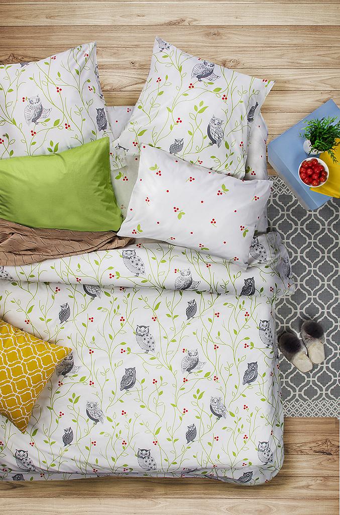 Комплект белья Sova & Javoronok Барбарис, 2-спальный, наволочки 50x70. 20308167782030816778Комплект белья Sova & Javoronok Барбарис изготовлен из натуральных и качественных материалов, поможет вам расслабиться и подарит спокойный сон.Постельное белье имеет и привлекательный внешний вид,отлично стирается, гладится, быстро сохнет.Комплект состоит из пододеяльника, простыни и двух наволочек.Благодаря такому комплекту постельного белья, вы сможете создать атмосферу уюта и комфорта в вашей спальне.Плотность: 120 г.