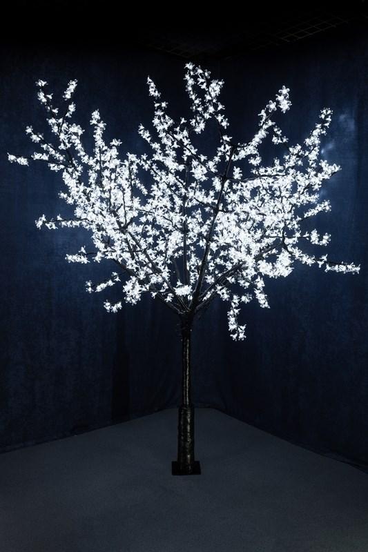 Светодиодное дерево Neon-Night Сакура, цвет: белый, диаметр кроны 200 см, высота 240 см531-125Световое дерево Сакура представляет собой имитацию цветущей японской сакуры. Оно используется для декоративного освещения интерьеров и ландшафтов. Такое дерево может стать прекрасным украшением для вашего дома, офиса, торгового зала, кафе, ресторана или загородного участка. Оно создаст уют, придаст оригинальный стиль и необходимый вам колорит независимо от времени года.Конструкция имеет лекгосплавной каркас в оболочке из темного пластика. На ветках дерева расположены яркие светодиодные гирлянды с силиконовыми насадками (цветками). Светодиодное дерево выглядит очень натурально. Питание осуществляется через сетевой трансформатор, поэтому изделие является низковольтным и может использоваться в уличных условиях.Диаметр кроны: 200 см.Высота дерева: 240 см.1728 лепестков.