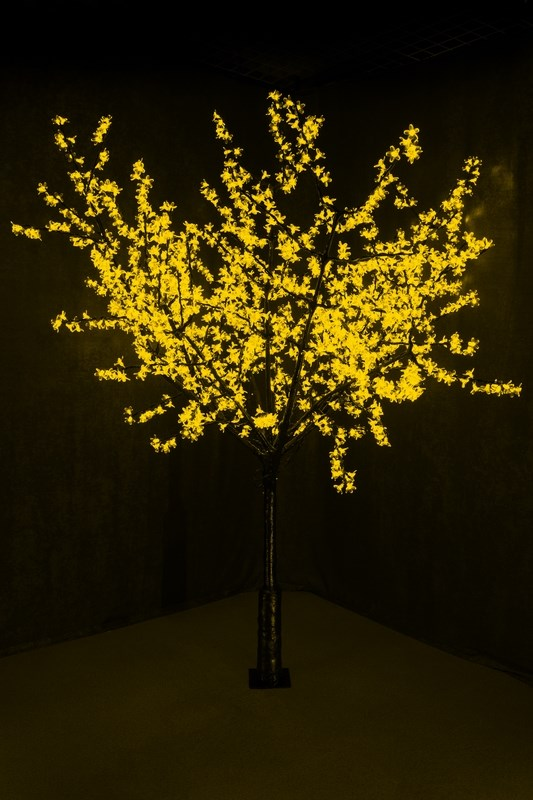 Светодиодное дерево Neon-Night Сакура, цвет: желтый, диаметр кроны 200 см, высота 240 см531-121Световое дерево Сакура представляет собой имитацию цветущей японской сакуры. Оно используется для декоративного освещения интерьеров и ландшафтов. Такое дерево может стать прекрасным украшением для вашего дома, офиса, торгового зала, кафе, ресторана или загородного участка. Оно создаст уют, придаст оригинальный стиль и необходимый вам колорит независимо от времени года.Конструкция имеет лекгосплавной каркас в оболочке из темного пластика. На ветках дерева расположены яркие светодиодные гирлянды с силиконовыми насадками (цветками). Светодиодное дерево выглядит очень натурально. Питание осуществляется через сетевой трансформатор, поэтому изделие является низковольтным и может использоваться в уличных условиях.Диаметр кроны: 200 см.Высота дерева: 240 см.1728 лепестков.