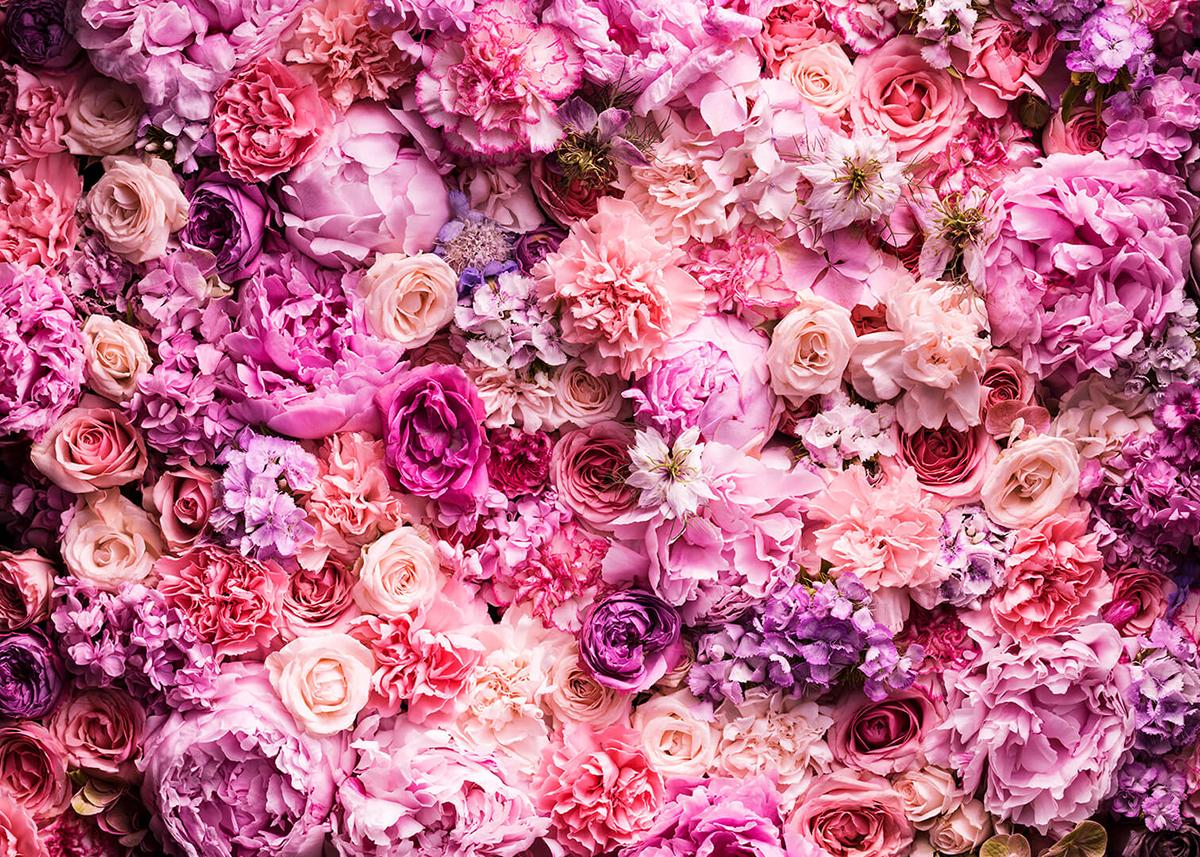 Фотообои PosterMarket Розовые цветы, 254 x 184 смWM-30Разные цветы розовых оттенков околдуют всех и каждого своими нежными лепестками. Это вечная весна, романтика и нежность.
