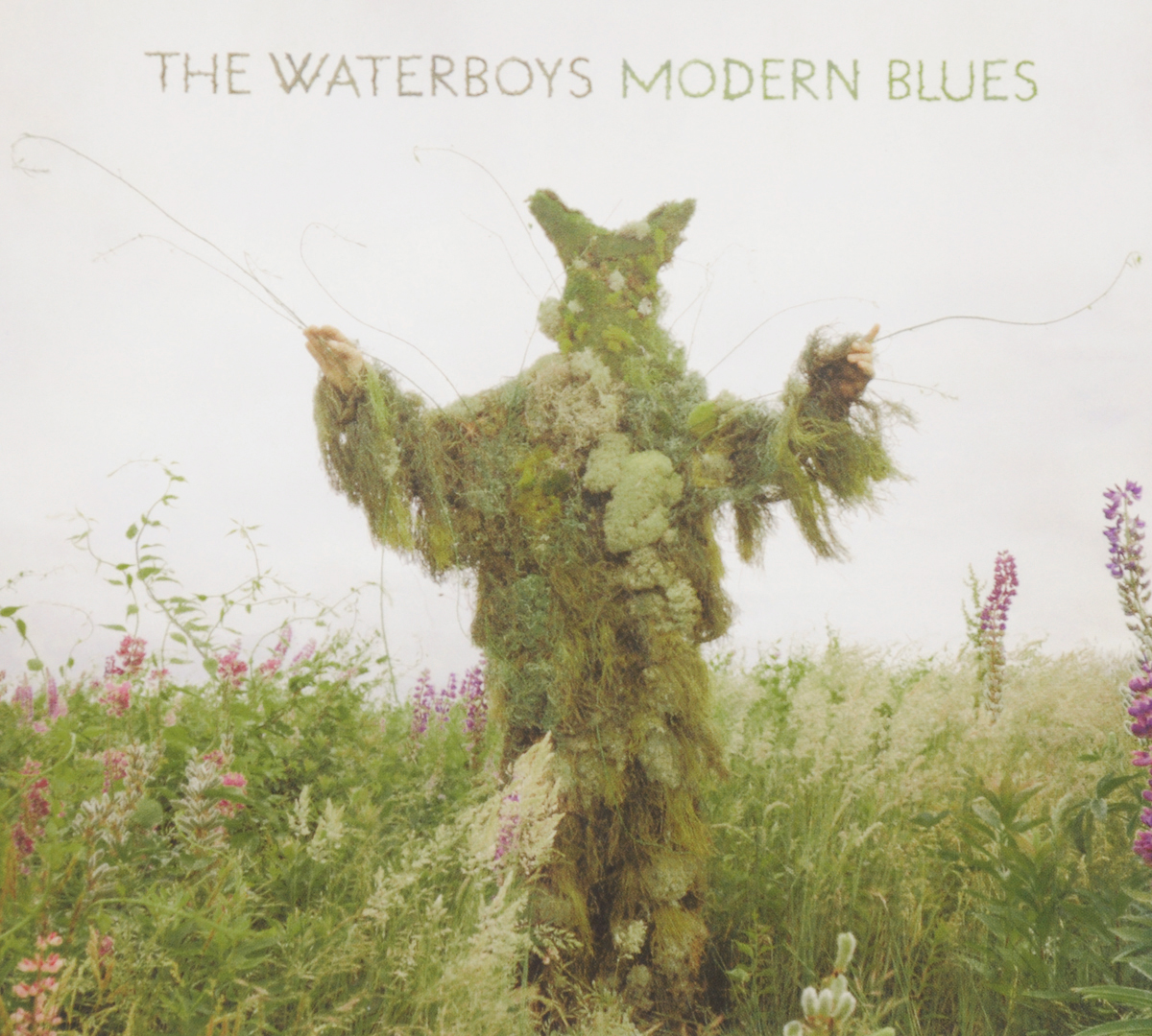 The Waterboys Waterboys. Modern Blues the waterboys guildford