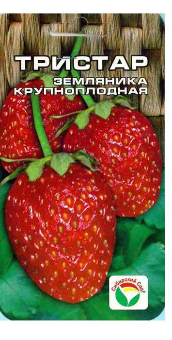 Семена Сибирский сад Клубника. Тристар семена сибирский сад клещевина красная обыкновенная 5 шт