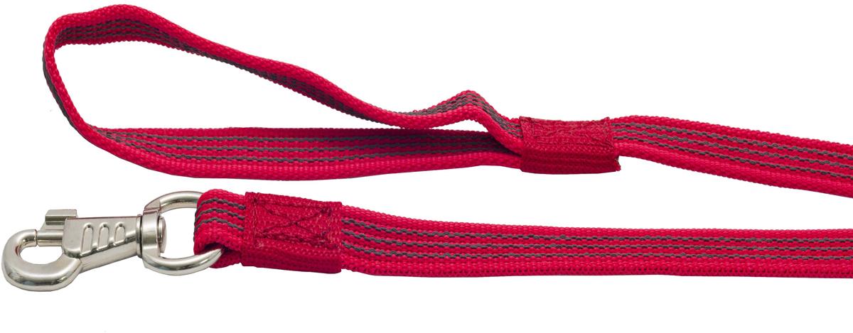Поводок для собак Каскад, цвет: красный, ширина 2 см, длина 10 м19000808-02Двухсторонний поводок для собак Каскад, изготовленный из нейлона, снабжен металлическим карабином. Для удобства фиксации в руке на поводке предусмотрена петля. Изделие отличается не только исключительной надежностью и удобством, но и привлекательным дизайном. Поводок - необходимый аксессуар для собаки. Ведь в опасных ситуациях именно он способен спасти жизнь вашему любимому питомцу. Иногда нужно ограничивать свободу своего четвероногого друга, чтобы защитить его или себя от неприятностей на прогулке. Длина поводка: 10 м. Ширина поводка: 2 см.