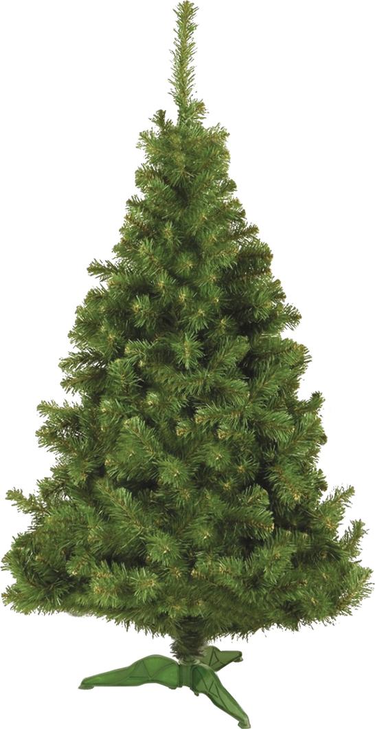 Ель искусственная Скандинавская, напольная, 150 см2215Искусственная ель Скандинавская - стройное дерево с классическим вытянутым силуэтом. Приятный сочный зеленый цвет, великолепная имитация древесины, просвечивающей сквозь пышные иголки, приподнятые вверх побеги придают этой ели особое очарование.