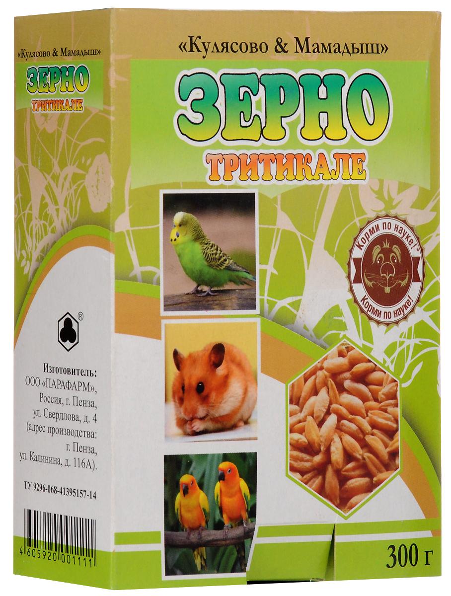 Корм Кулясово и Мамадыш Тритикале для птиц и грызунов, 300 гТР_1111Корм Кулясово и Мамадыш Тритикале - пшенично-ржаной гибрид.По кормовым достоинствам превосходит другие зерновые культуры. Качество протеина у тритикале более высокое, чем у пшеницы или ржи, так как в нем содержится больше белкового азота и незаменимых аминокислот. Тритикале превосходит рожь и пшеницу по содержанию каротиноидов (провитамин А) и сахаров, что обеспечивает его лучшую поедаемость.Состав: зерно тритикале.Товар сертифицирован.