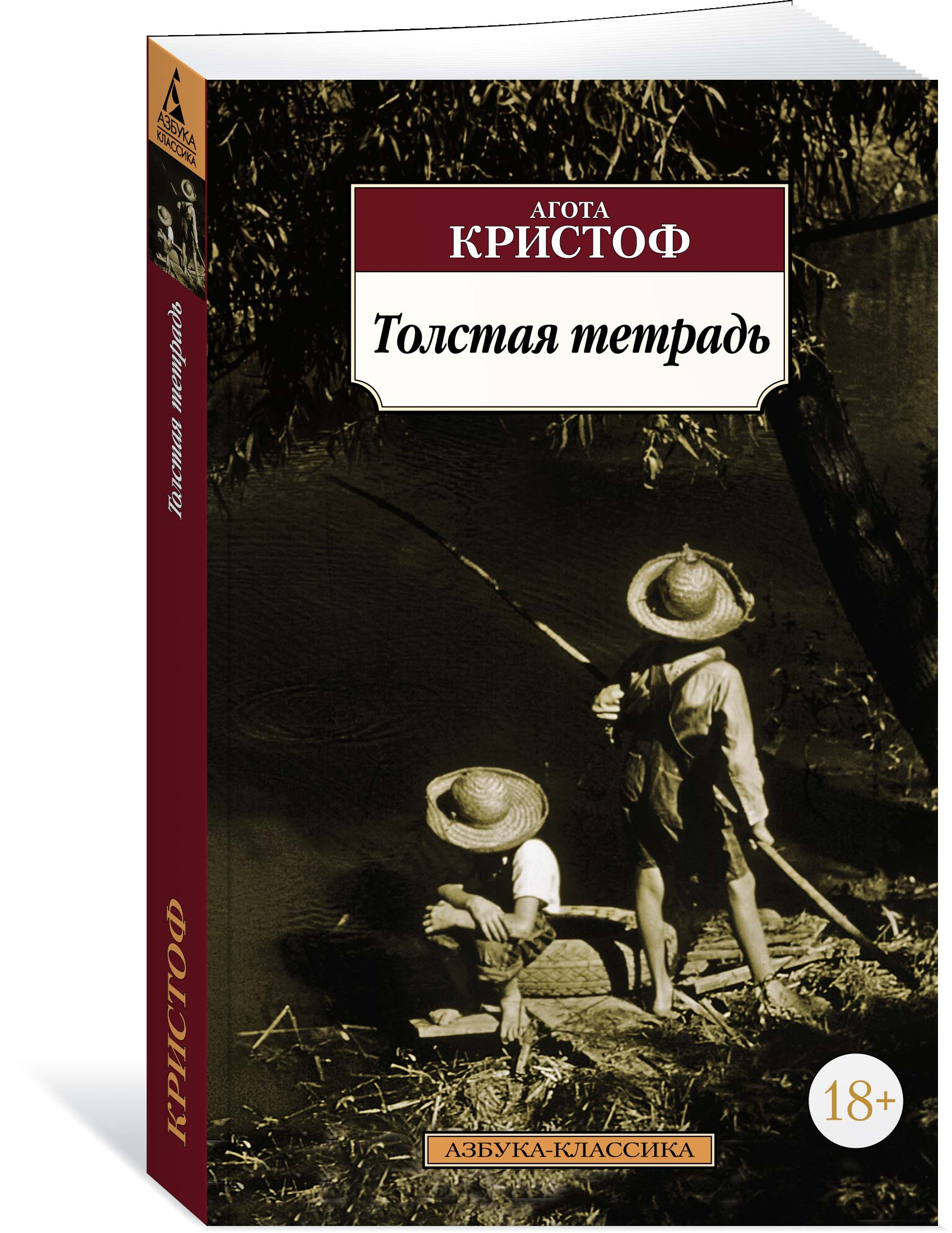 Агота Кристоф Толстая тетрадь как дом в деревне на мат капиталл