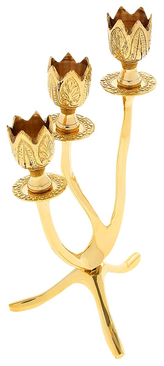 Подсвечник Тюльпаны, на 3 свечи, цвет: светло-золотистый, 13 х 15 х 26 см841247Подсвечник на 3 свечи Тюльпаны словно настоящий королевский аксессуар, который недавно стоял в огромном коридоре большого царского замка. Его блеск переливается в лучах света, хочется прикоснуться к нему или даже взять в руки, чтобы ощутить тяжесть латуни и нежные изгибы подсвечника. Такой грациозный предмет станет актуальным подарком на семилетнюю годовщину свадьбы, юбилей, 8 Марта и любой другой праздник. Подсвечник, который подчеркнет Ваш безупречный вкус!