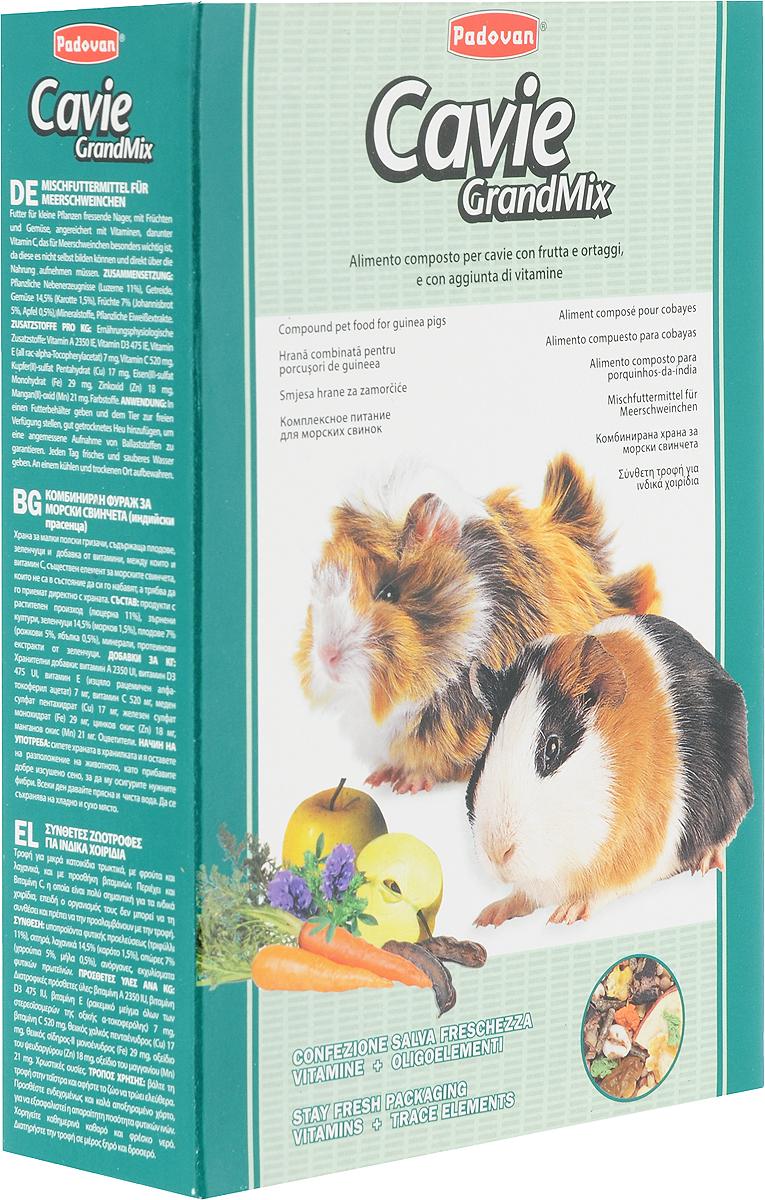 Корм Padovan Cavie Grandmix, для морских свинок с витамином С, 850 г padovan grandmix cavie