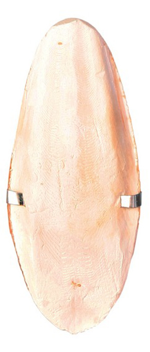 Панцирь каракатицы Trixie, с держателем, для птиц5050- натуральный продукт, содержит необходимый кальций, - помогает ухаживать за клювом
