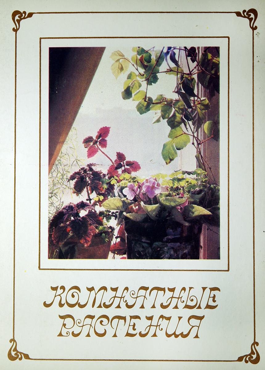 Комнатные растения (набор из 15 открыток) ирина круглова максим китаев хеллоу хуман набор из 12 открыток
