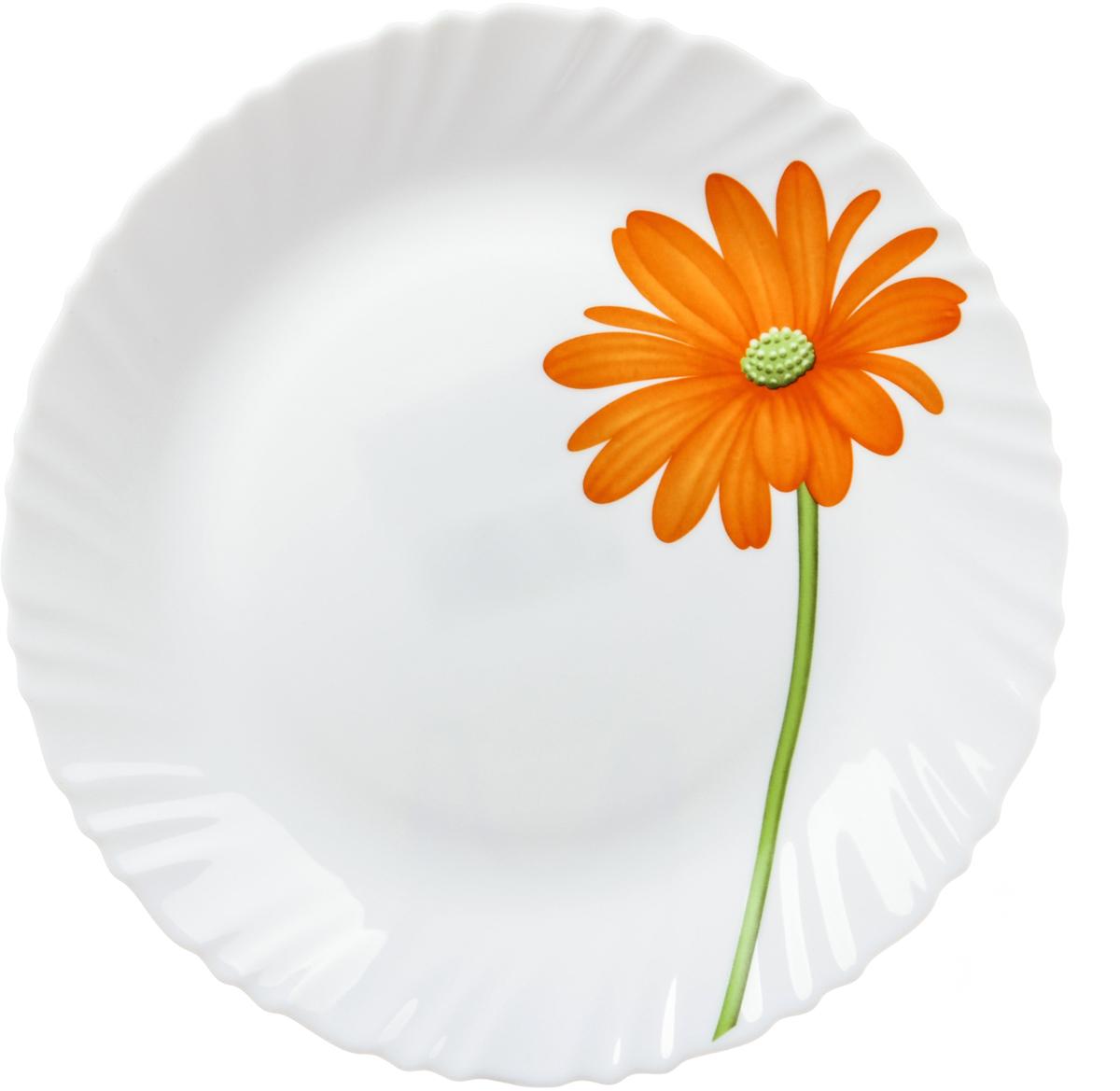 Тарелка десертная La Opala Гербера, диаметр 19 смOPCB003В 18 веке купец и гончар из Бристоля изобрел способ производства опалового непрозрачного стекла, оттенком напоминающего фарфор или эмаль и имеющего приятную бархатистую поверхность. Вплоть до начала 20 века его так и называли – бристольским опаловым стеклом.Сегодня считаются синонимами названия опаловое и молочное стекло. Неизменно одно: оставаясь по сути своей стеклом, опаловое или молочное стекло отличается от обычного наличием в составе специальных химических добавок – так называемых глушителей, изменяющих оптические свойства стекла. После формования конечной формы предмета и дополнительного нагрева (закаливания) до температуры свыше 4000°С (температура размягчения стекла) эти дополнительные добавки образуют ядра кристаллизации, которые вырастают в кристаллы, полностью заполняющие все мельчайшие пространства. Посуда из опалового стекла обладает рядом преимуществ по сравнению с традиционной посудой из обычного стекла или фарфора. Во-первых, она очень легкая и гигиенически чистая благодаря отсутствию пор. Во-вторых, обладает повышенной устойчивостью:- к температурному шоку: поверхность стекла не будет лопаться из-за внезапных перепадов температуры;- к ударам: в несколько раз крепче стандартного стекла;- к износу: имеет высокую износоустойчивость.Именно поэтому опаловое стекло не боится царапин, обладает повышенной ударопрочностью. Посуду из опалового стекла можно мыть в посудомоечных машинах и готовить в нем пищу в микроволновой печи. В-третьих, опаловое стекло необычайно яркое. На гладкую поверхность посуды из опалового стекла отлично наносятся декоративные краски. Физико-химический состав опалового стекла позволяет краскам переливаться, из-за чего создаются сверкающие оттенки а-ля опал.