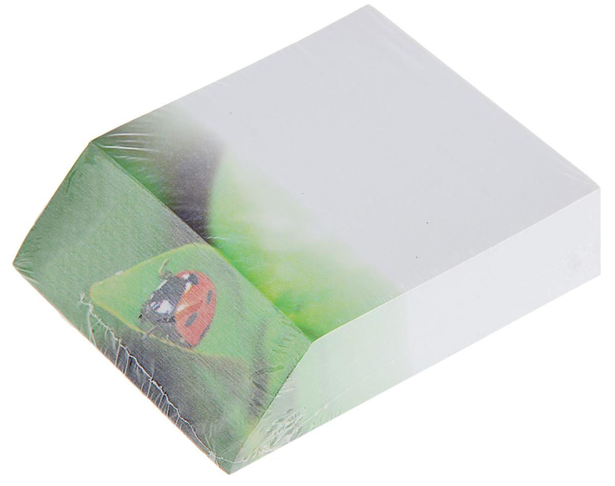 Фолиант Блок для записей Божья коровка 9 x 10 см 300 листов1794294Невозможно представить нашу жизнь без праздников! Мы всегда ждем их и предвкушаем, обдумываем, как проведем памятный день, тщательно выбираем подарки и аксессуары, ведь именно они создают и поддерживают торжественный настрой. Блок бумаги для записей 9х11см, 300 листов Божья коровка, офсет 70г/м2 — это отличный выбор, который привнесет атмосферу праздника в ваш дом!Часто появляется необходимость оставить небольшое послание коллеге, сделать пометку для родных или запомнить нужный телефон?Чтобы зафиксировать важную информацию, достаточно иметь при себе неброский, но необходимый в быту предмет — Блок бумаги для записей 9х11см, 300 листов Божья коровка, офсет 70г/м2. Этот канцелярский аксессуар займет минимум места в сумке или на рабочем столе.